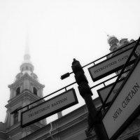 Ориентиры...в тумане.. :: tipchik