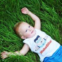 я на солнышке лежу :: Анастасия Рогозина