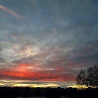 Закатное небо :: Tatjana