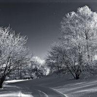 Зима :: Leonid Rutov