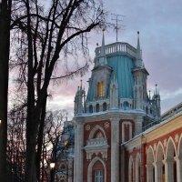 Башня Царицинского комплекса :: Валентина. .