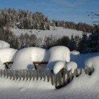 Снежная зима :: Валерий Чепкасов