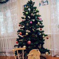 Наступление праздника :: Райдара Лесная