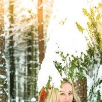 Великолепный зимний и снежный лес :: Екатерина Гриб