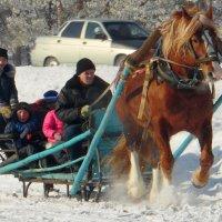 На лошадке вдоль села. :: nadyasilyuk Вознюк