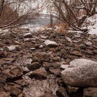 Омелевшая река :: Сергей Герасимов