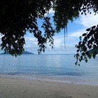 Остров Ко Чанг. :: Лариса (Phinikia) Двойникова