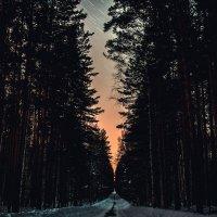 Путь :: Илья Матвеев