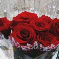 Букет красных роз :: Татьяна Колганова