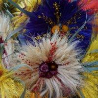Цветы запоздалые... :: Алёна Савина