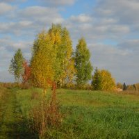 в деревне :: Александр Попков