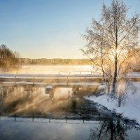 Зимним морозным утром. :: Анатолий 71
