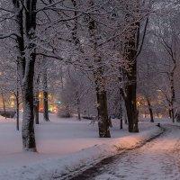 Про зимний вечер :: Александр Творогов