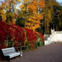 Осенний парк :: Натали Пам