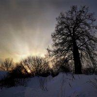 Солнце у горизонта :: Валерий Талашов
