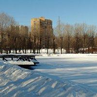 озеро зимой :: Валентина. .