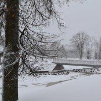 Зимний пейзаж. :: zoja