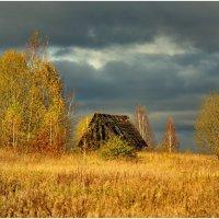 Октябрь :: Олег Осипов
