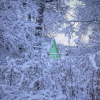 В зимнем окне :: Константин
