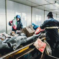 Переработка мусора :: Андрей Липов