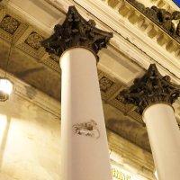 Иней на колоннах Исаакиевского собора :: Юрий Зима