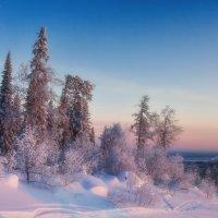 Зимнее утро :: vladimir Bormotov