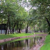 Парк весной :: Вера Щукина