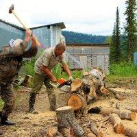 Заготовка дров :: Сергей Чиняев
