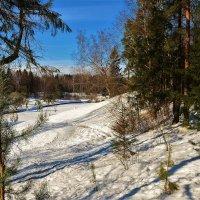 На холмах у Славянки реки... :: Sergey Gordoff