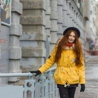 Прогулка под первым снегом. :: Наталья Новикова (Камчатская)