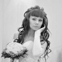 Алиса :: Олег Загорулько