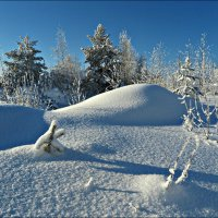 Снежная зима :: Leonid Rutov