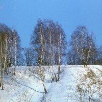 Полесский пейзаж :: Сергей Тарабара