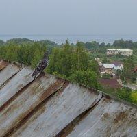 Сизарь на стене бывшего Горицкого монастыря :: Сергей Цветков