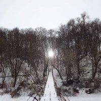 Мостик к солнцу :: Елена Миронова