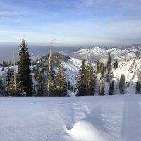 Вчера весь день шел снег. :: Anna Gornostayeva