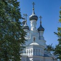 Собор Владимирской Иконы Божией Матери :: Ольга Лиманская