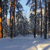 Не торопится январь уйти из леса... :: Лесо-Вед (Баранов)