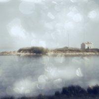 Остров  забвения :: Ирина Сивовол