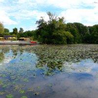 Парк в районе Вильгельмсбург (серия). Когда облака купаются в озере :: Nina Yudicheva