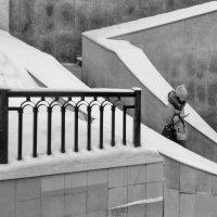 В лабиринте зимы! :: Владимир Шошин