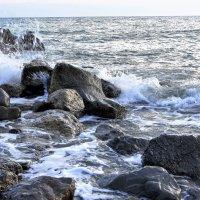 Когда море волнуется :: Виктория Попова