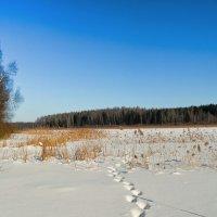 Февраль :: Милешкин Владимир Алексеевич
