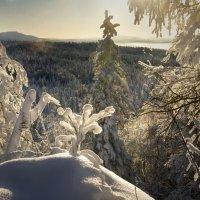 Зимние картинки :: Галина Ильясова