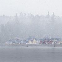 Снегопад :: Alena Nuke