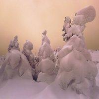 Снежный бал :: Владимир Кочкин