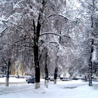 Снежной зимой в городе :: Елена Семигина