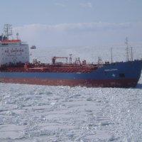 По льду Финского залива :: Марина Домосилецкая