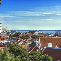 Панорама старого Таллина :: Ирина Лепнёва
