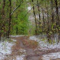 Ранний снег :: Вера